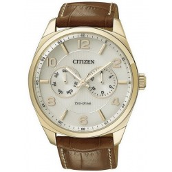 Citizen Men's Watch Metropolitan Eco-Drive AO9024-16A Multifunction
