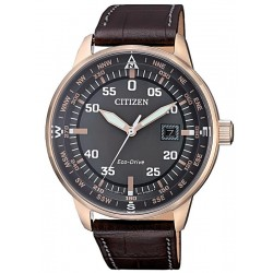 Citizen Men's Watch Aviator Eco-Drive BM7393-16H